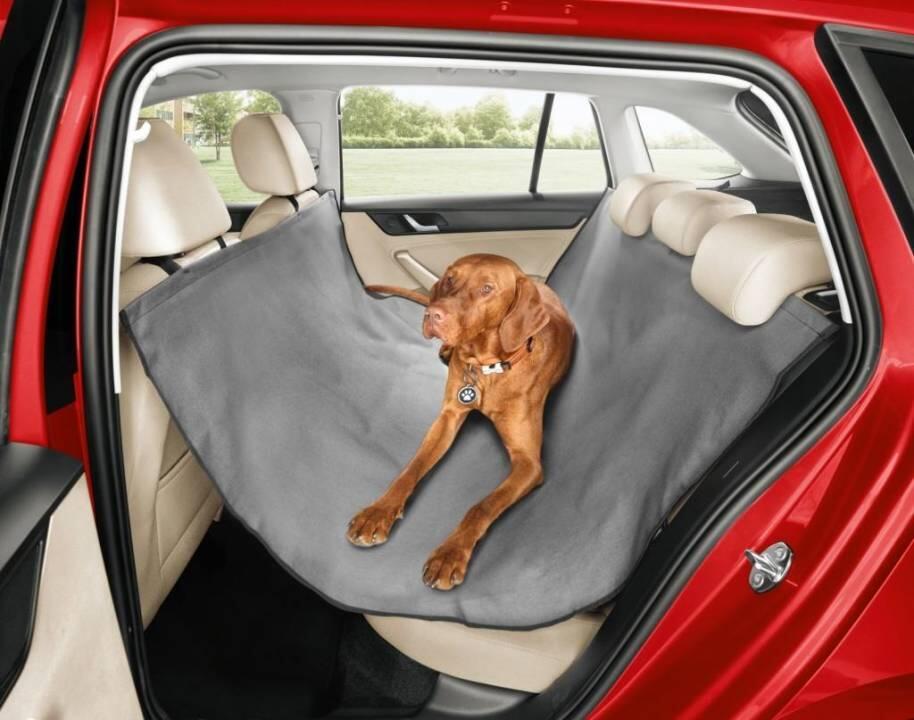 skoda-accessories-dogs-1