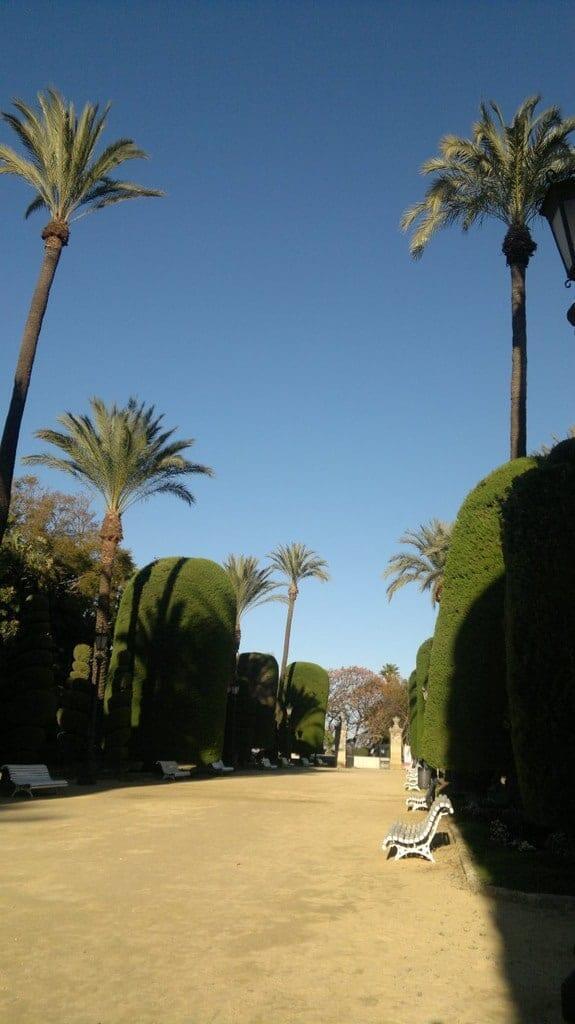 Costa del Sol - Cadiz - Parque Genoese