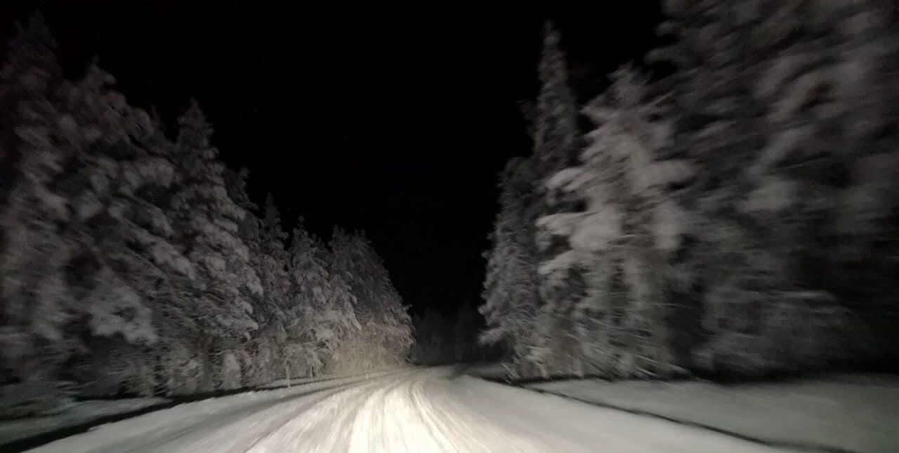 Jokamies-Teslalla-talvella-Nordkappiin-metsä