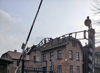 Jokamies-Itäblokki-Teslalla-Auschwitz-Portt